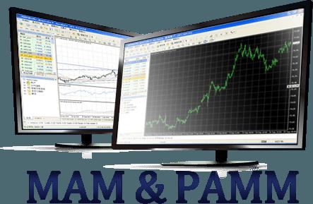Binary option pamm bank manager